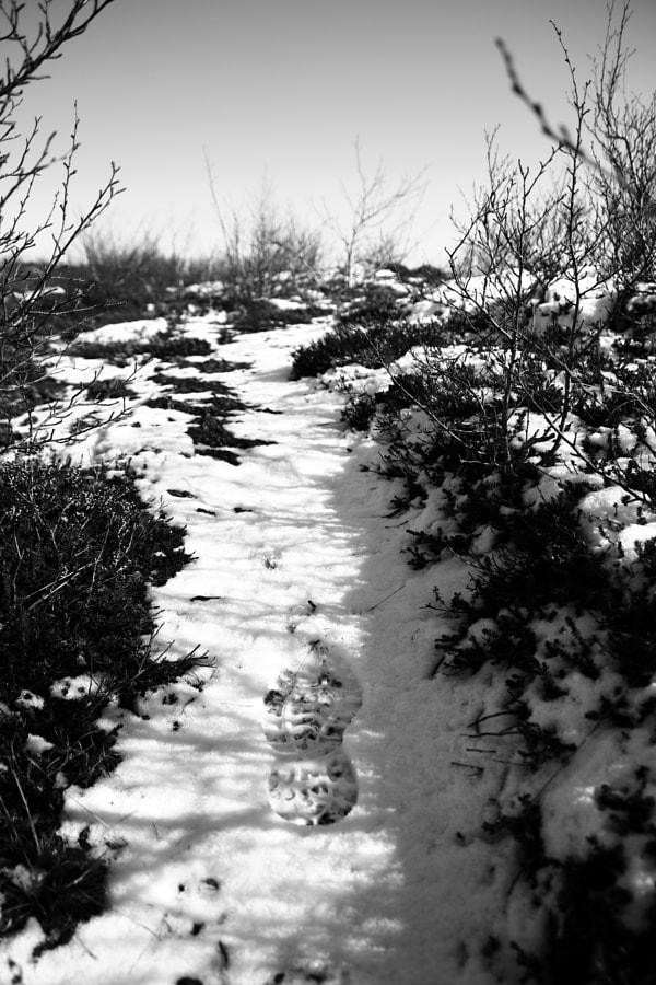 Footprint_in_Snow