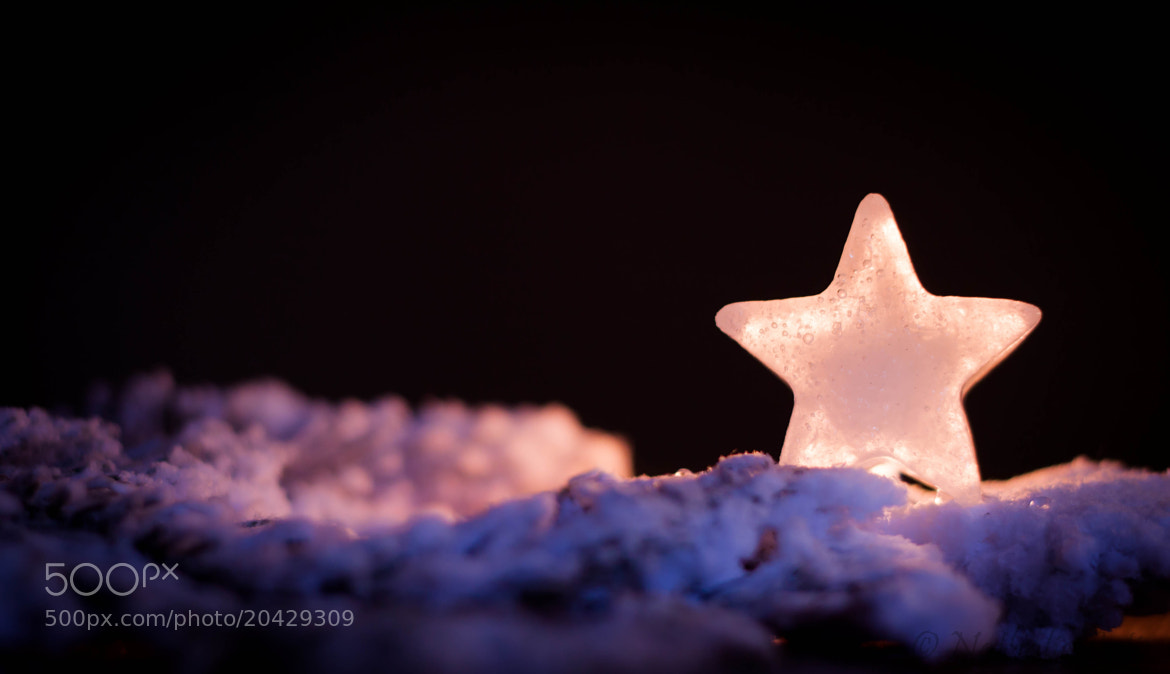 Photograph Icy little star by Nathalie Latic on 500px