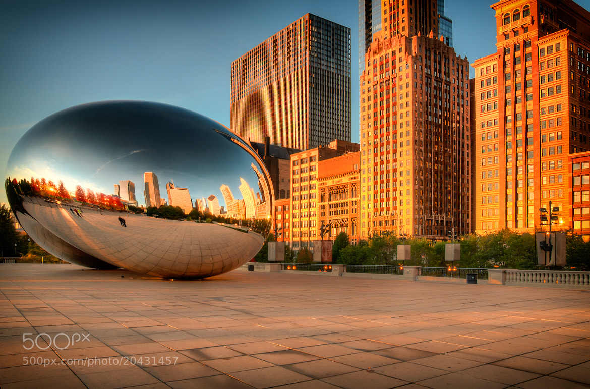 Photograph Good Morning, Bean by Joerg Piechotka on 500px