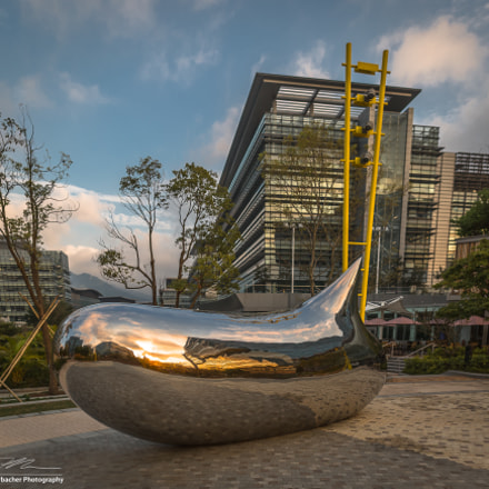 Shiny Sunset Reflections, Canon EOS 5D MARK III, Sigma 20mm f/1.4 DG HSM | A