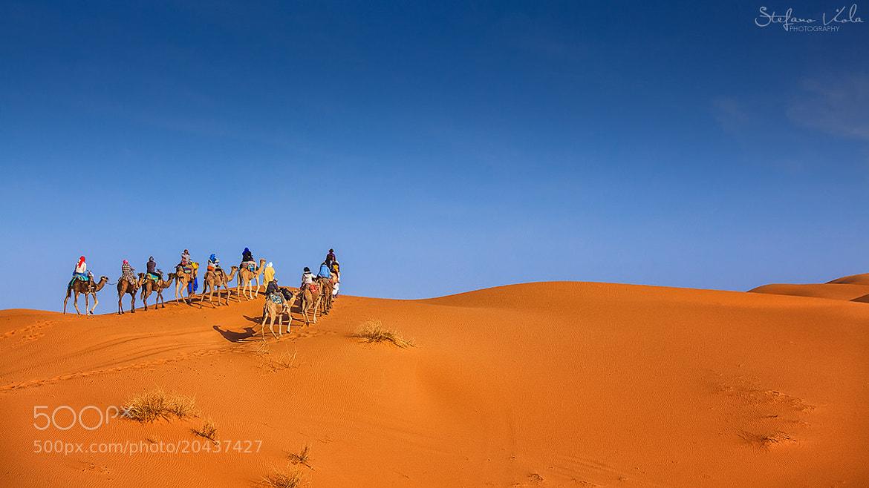 Photograph Sahara desert by Stefano  Viola on 500px
