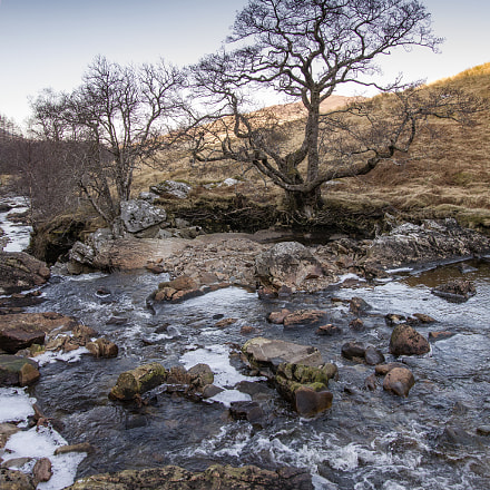 Somewhere in scotland, Canon EOS 5DS, Sigma 24-105mm f/4 DG OS HSM   A