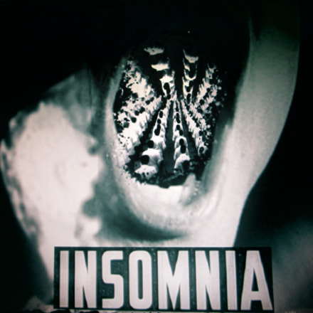 Insomnia, Canon POWERSHOT A810