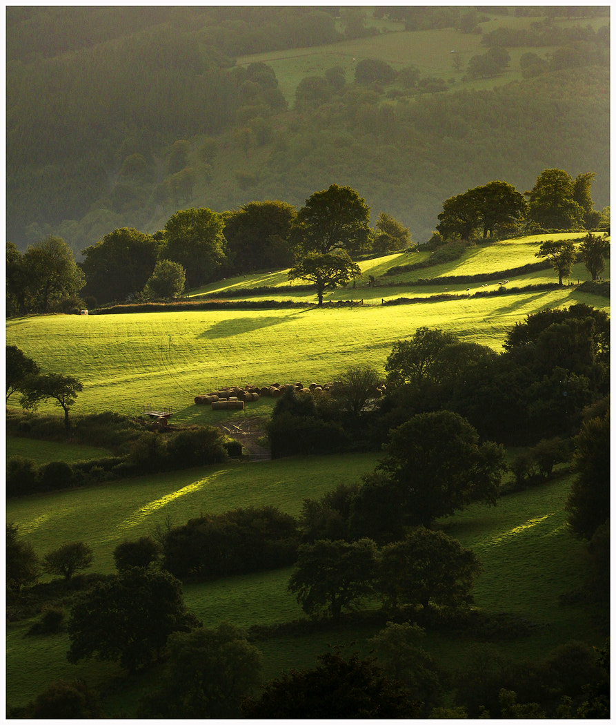 Photograph Morning Light II by Alan Coles on 500px