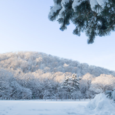 Snowy day, Canon EOS M3, Canon EF-M 11-22mm f/4-5.6 IS STM