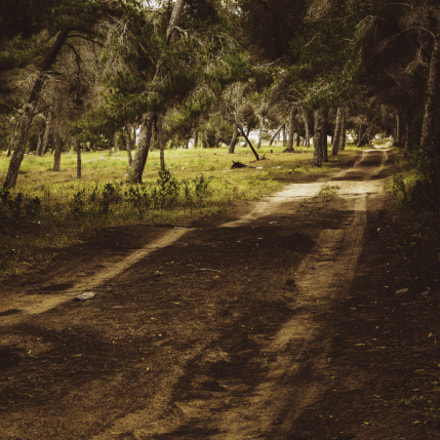 Dirt Road, Canon EOS 7D MARK II, Canon EF-S 18-135mm f/3.5-5.6 IS STM