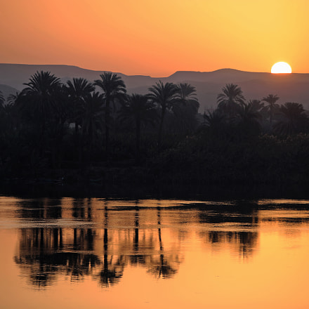 Morning in the Nile, Canon EOS 5D MARK IV, Canon EF 70-200mm f/2.8L IS