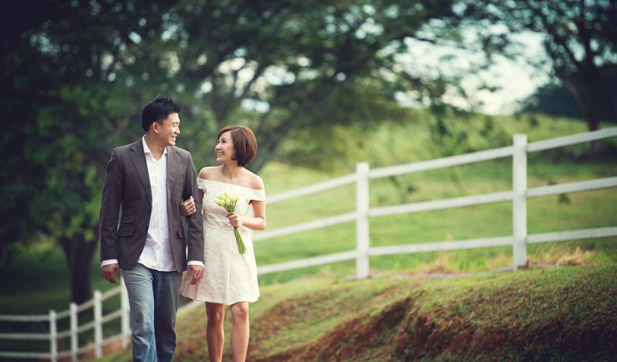 Diary love Farm