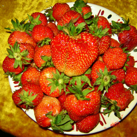 Strawberry, Sony DSC-S60