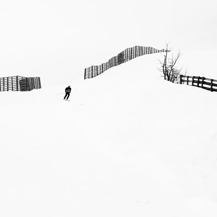 Ski. Black and white