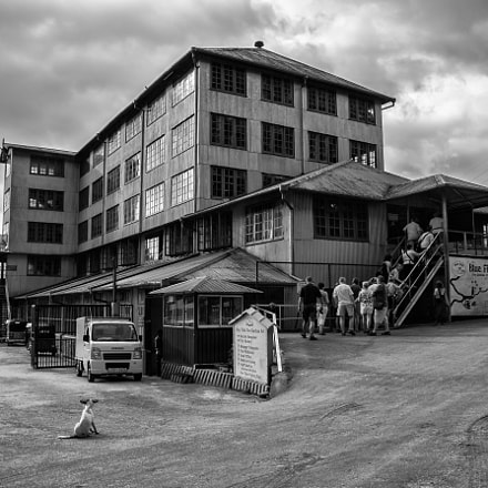 Tea Factory in Sri, Canon EOS 70D, Canon EF-S 17-55mm f/2.8 IS USM