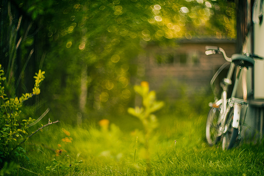Photograph Summer mood by alexander kan on 500px