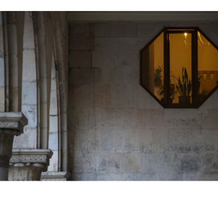 Window in Parliament, Canon EOS-1D X, Canon EF 28-300mm f/3.5-5.6L IS