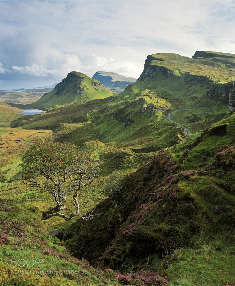 Photograph Quiraing Velvet by Ian Cameron on 500px