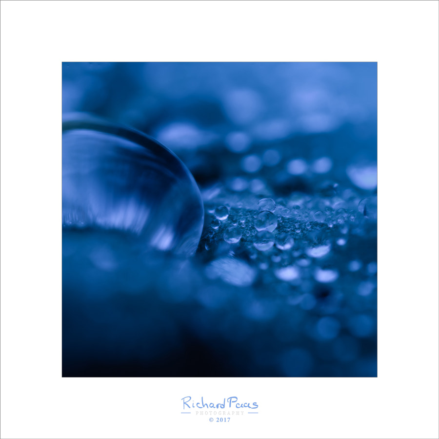 Waterdrop #2 (blue hour) by Richard Paas on 500px.com