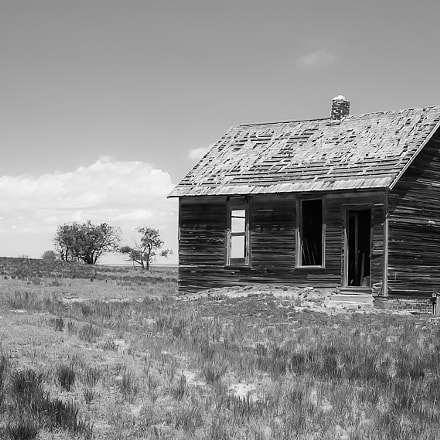 This Old House, Pentax K10D