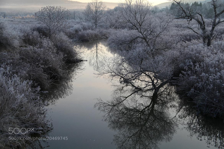 Photograph Frost by Robert Och on 500px