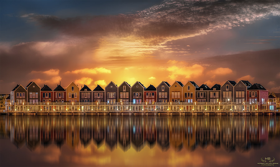 The Golden Pond by Herman van den Berge on 500px.com