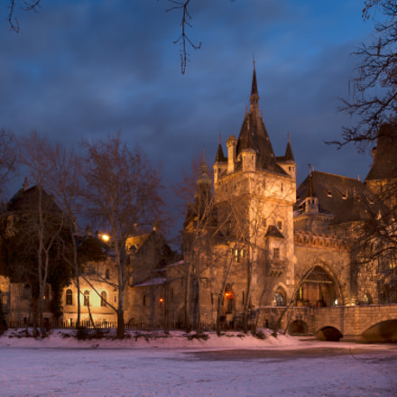 Vajdahunyad Castle, late night, Nikon D7100, AF-S Nikkor 17-35mm f/2.8D IF-ED