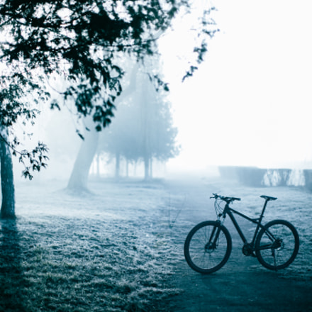 Cycling in the park, Canon EOS 6D, Canon EF 50mm f/1.2L