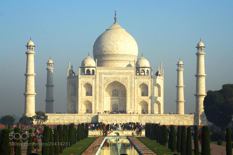Photograph ~Taj...waah Taj by Shyam Agrawal on 500px