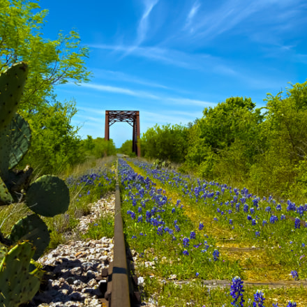 The Blue Bonnet Rail, Canon EOS 7D, Canon EF 24-105mm f/4L IS
