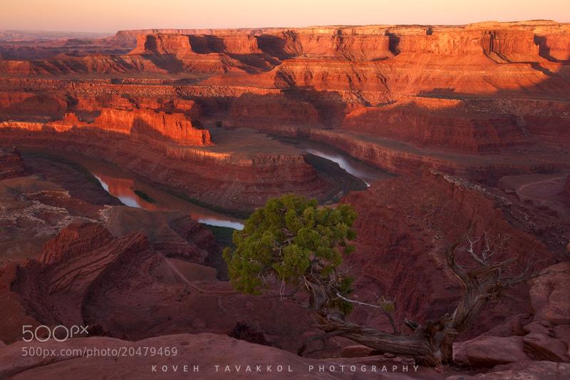 Photograph Desert Sunrise by Koveh Tavakkol on 500px