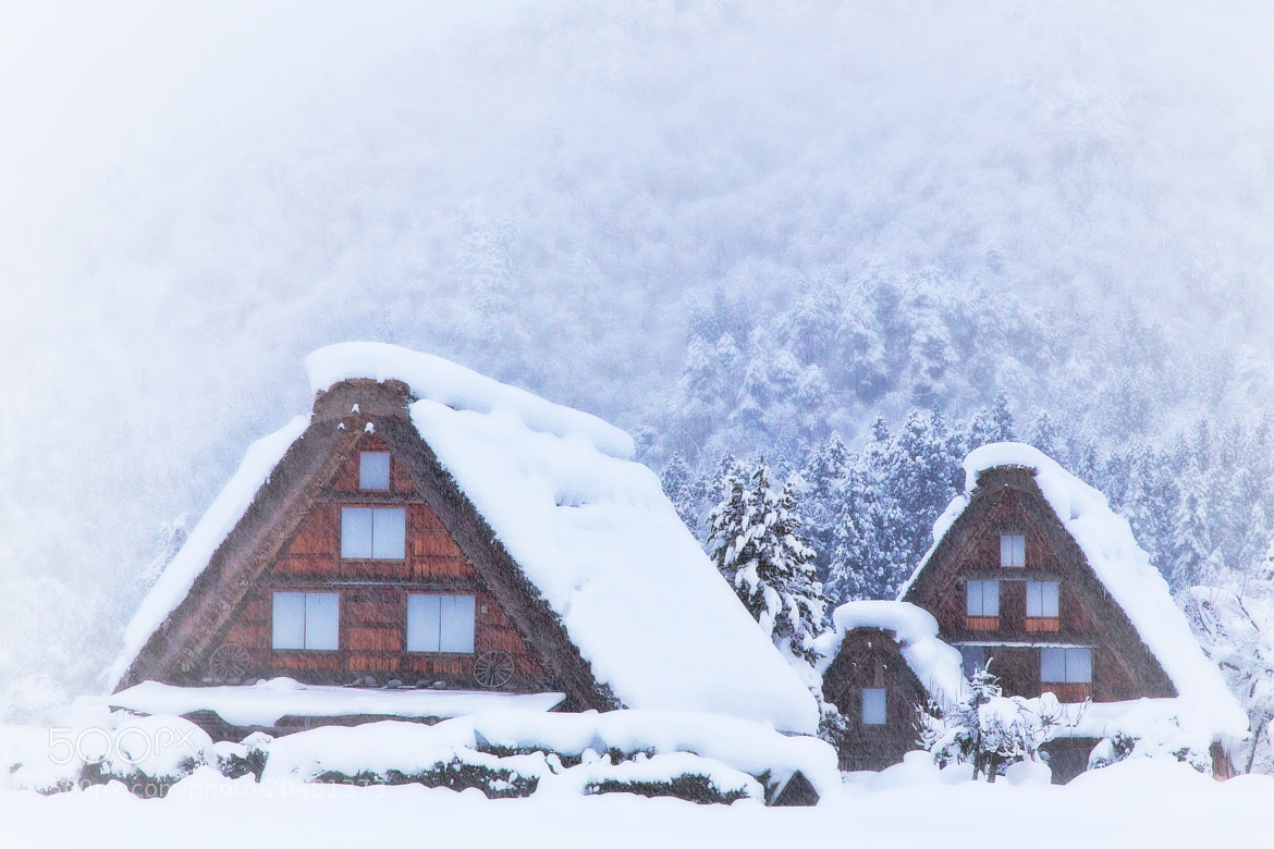 Photograph Heavy snow in Shirakawa-go by MIYAMOTO Y on 500px