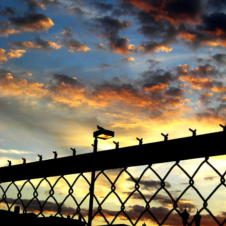 Fence Sunset, Nikon COOLPIX L6