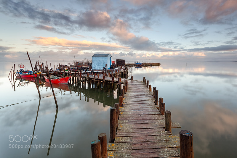 Photograph Slippery Stilts by Carlos Resende on 500px