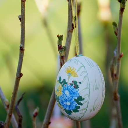 Easter Egg, Sony ILCA-77M2, Tamron SP 70-300mm F4-5.6 Di USD