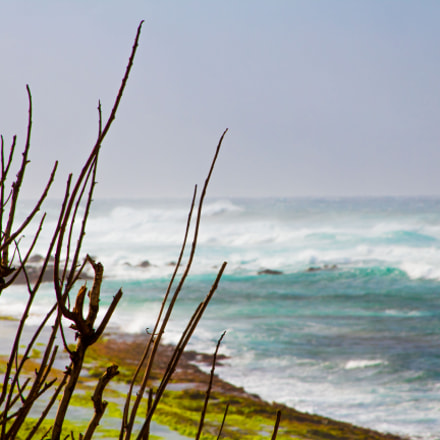 Windy Ocean, Canon EOS REBEL T6, Canon EF 28-135mm f/3.5-5.6 IS