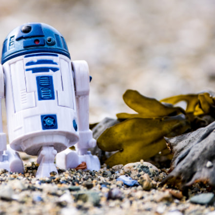 R2D2 by the sea, Panasonic DMC-G85, Lumix G X Vario 35-100mm F2.8 Power OIS