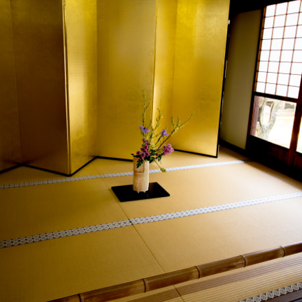 Room of gold..., Canon EOS KISS X7I, Canon EF-S 10-18mm f/4.5-5.6 IS STM