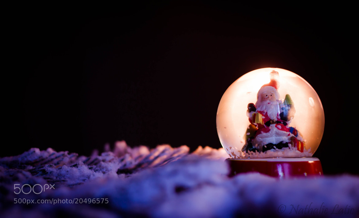 Photograph Snowball by Nathalie Latic on 500px