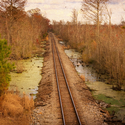 The Tracks, Sony ILCE-7RM2, Sigma 24-105mm f/4 DG OS HSM | A