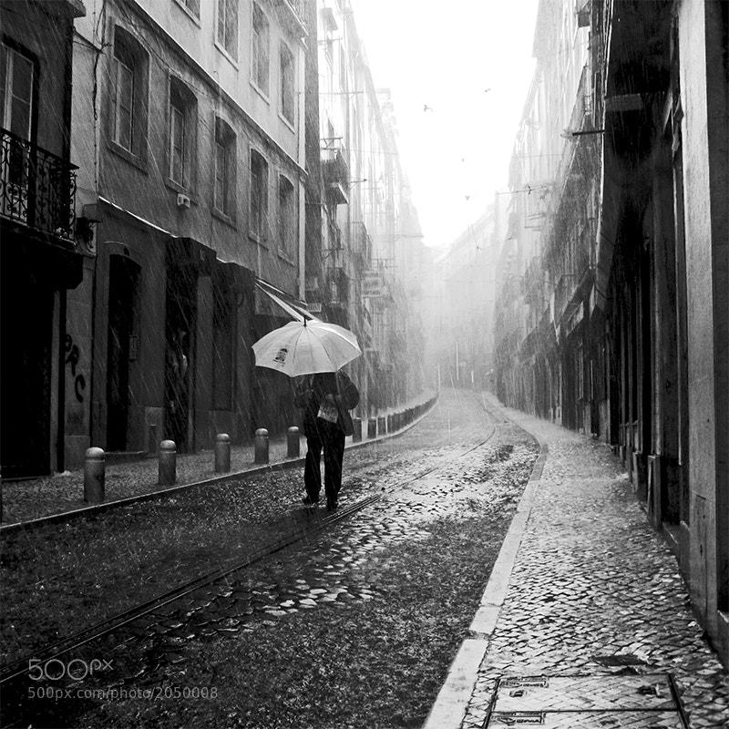 Photograph î'''' by Paulete Matos on 500px