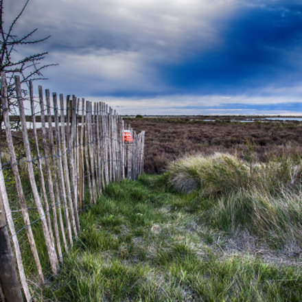 Lost Fences., Canon EOS 700D