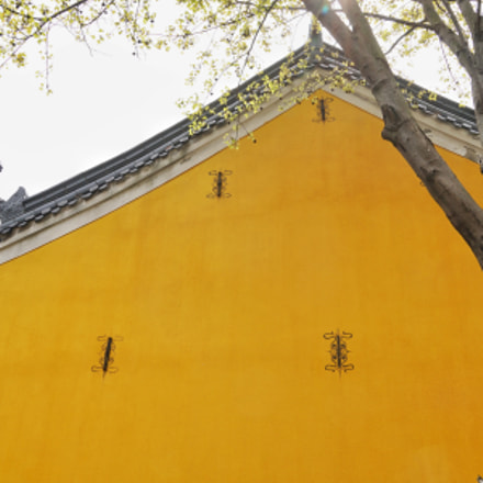 Yellow roof, Sony ILCE-6300, Sony E 16-70mm F4.0 ZA OSS