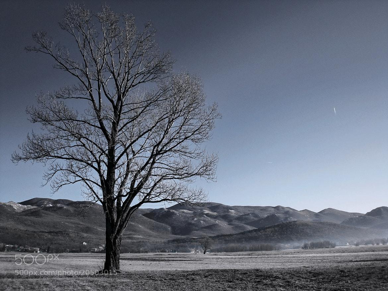 Photograph Melancholia by Dragan Djuric on 500px