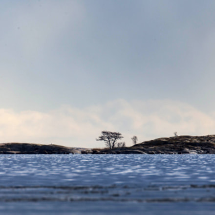 A small island in, Canon EOS-1D X, Canon EF 500mm f/4L IS + 1.4x
