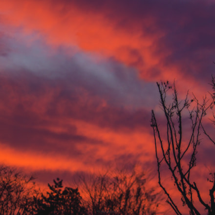 Red sunset , Canon EOS 550D, Canon EF-S 55-250mm f/4-5.6 IS