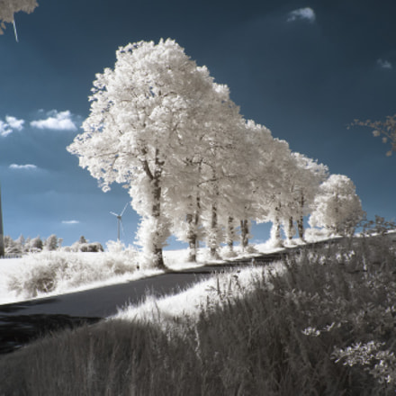 Infrared - Road to, Panasonic DMC-GH2