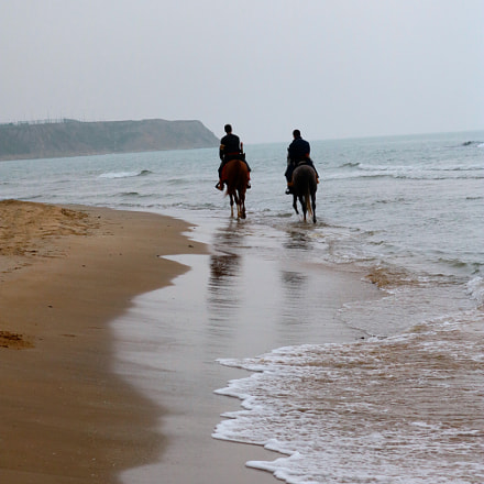 horses & sea, Canon EOS 750D, Canon EF-S 18-55mm f/3.5-5.6 IS STM