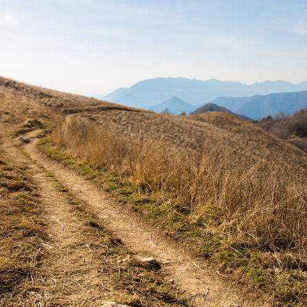 Follow the Path, Canon EOS 6D, Canon EF 24-105mm f/3.5-5.6 IS STM
