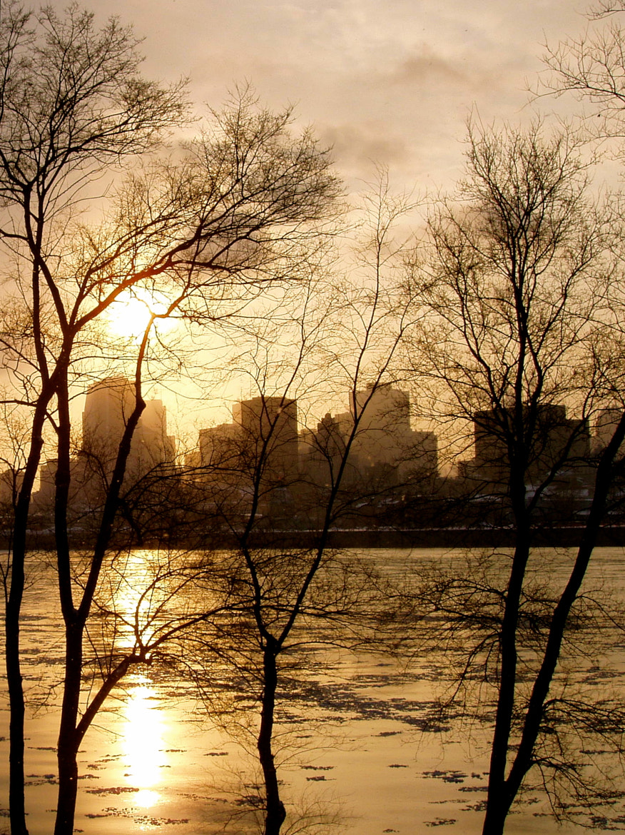 Photograph Golden Sunset in Montréal by Jp Zuferri on 500px