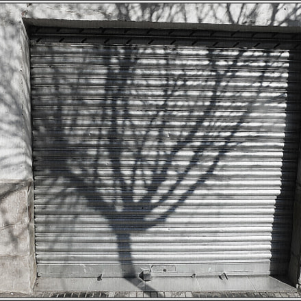 Urban shadow 2, Panasonic DMC-TZ8