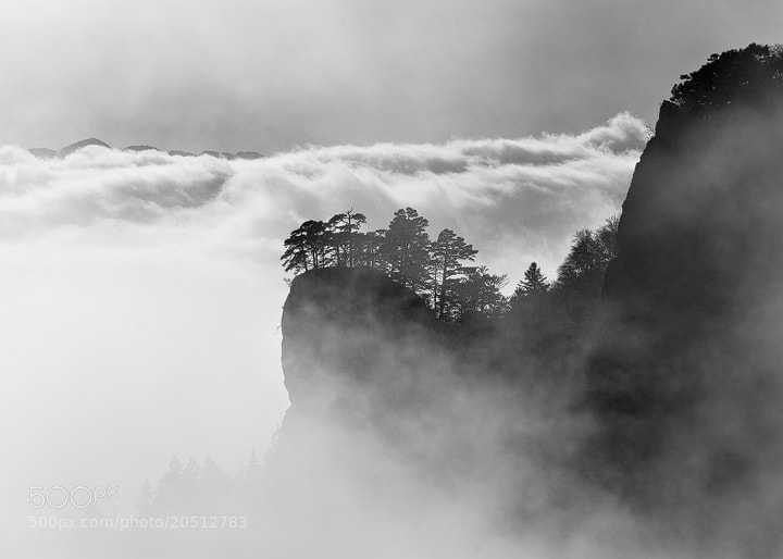 "Photograph Out of the fog by Roland ""Bill"" Moser on 500px"