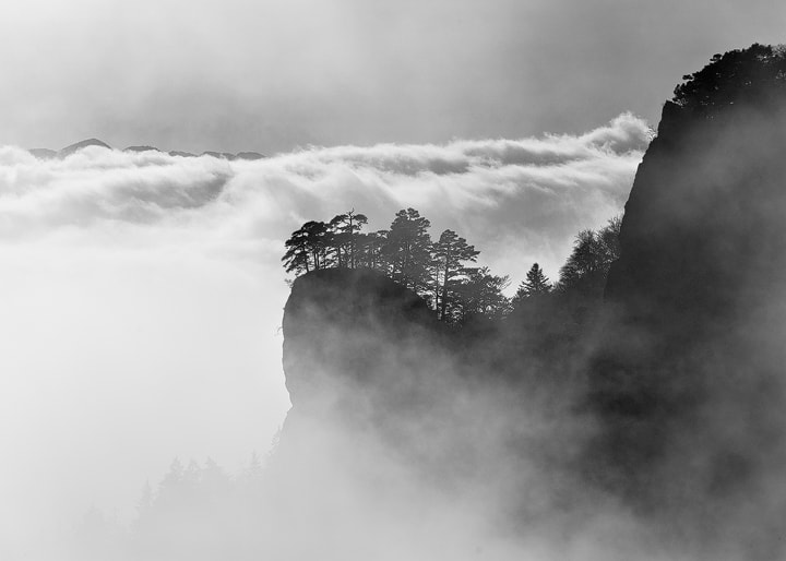 """Photograph Out of the fog by Roland """"Bill"""" Moser on 500px"""