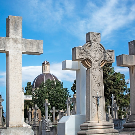 Palma cemetery crosses, Nikon D7100, PC-E Nikkor 24mm f/3.5D ED